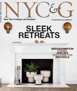 NYC&G November 2018 cover